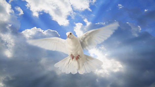 Holy Ghost or Holy Spirit is there any Difference?